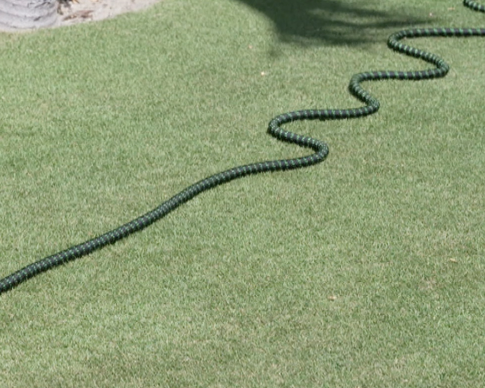 bungee hose expands up to 50 ft