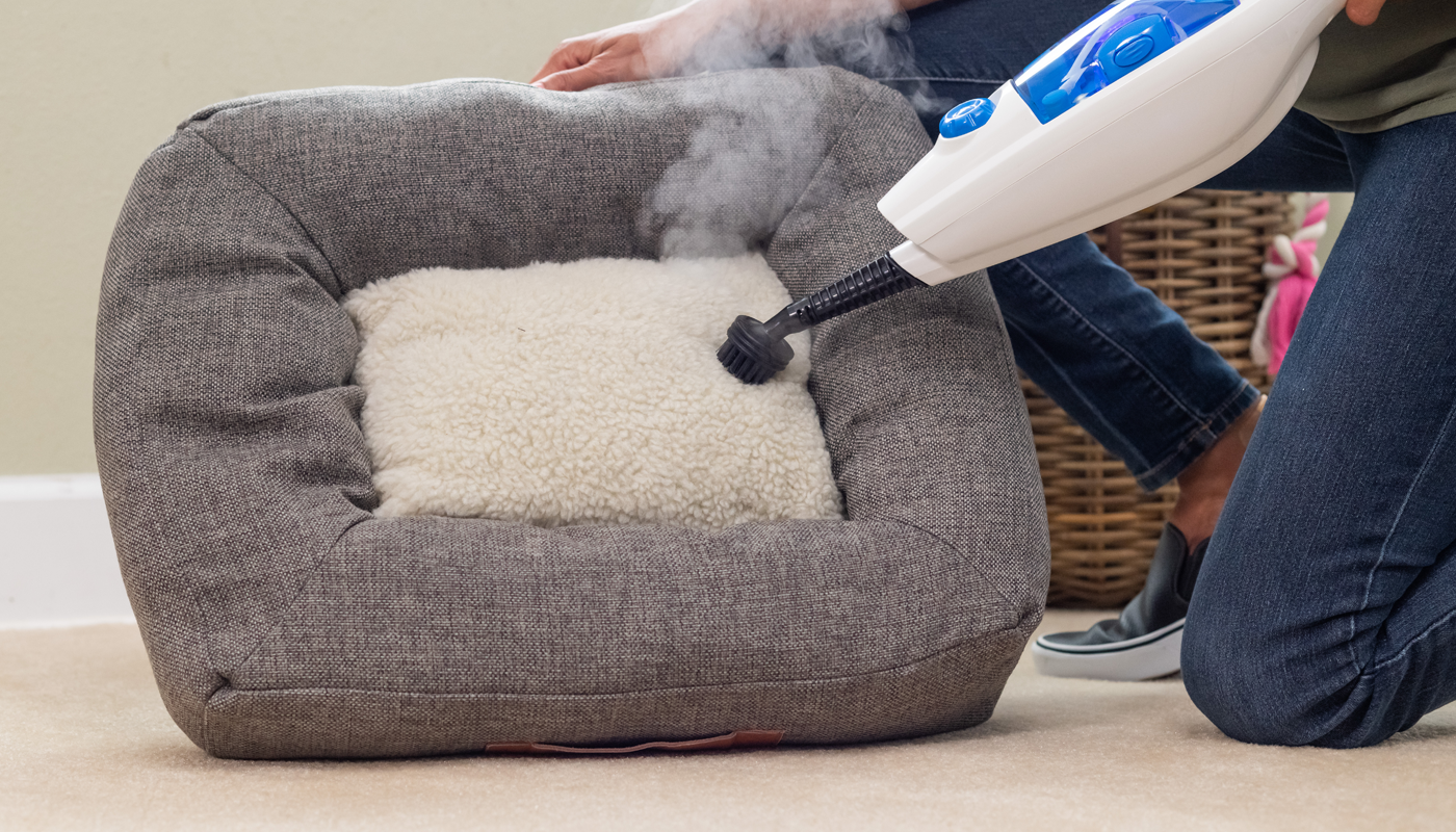 cleanica cleaning dog bed