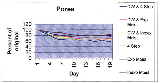 Pore Reduction Graph