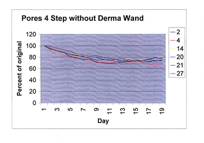 Pores 4 step without DermaWand