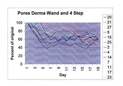 Pores 4 step and DermaWand